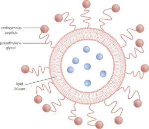 Scientific images for presentations