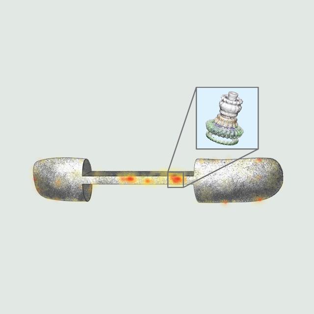 Illustration for scientific workshops