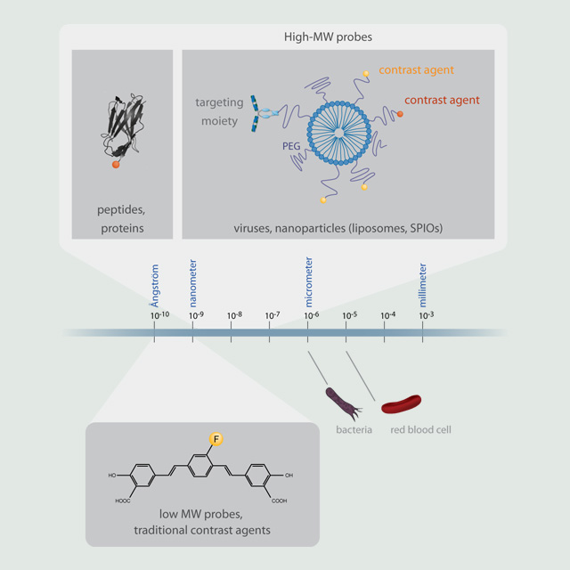 Illustrations for research perspectives or reviews